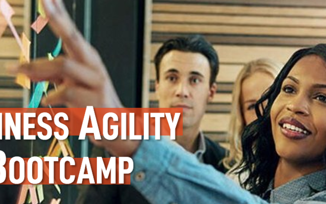 Business agility Bootcamp